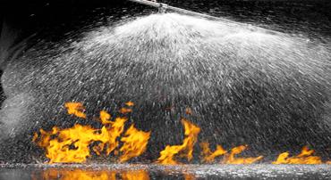 Fire Sprinkler