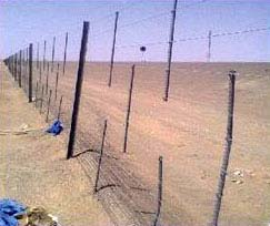 Sand Fencing 01