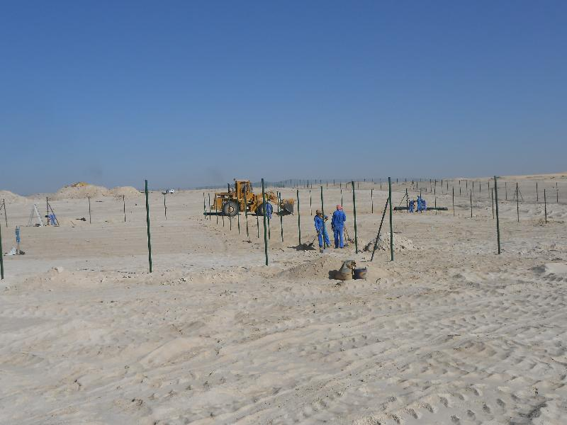 Sand Fencing 03