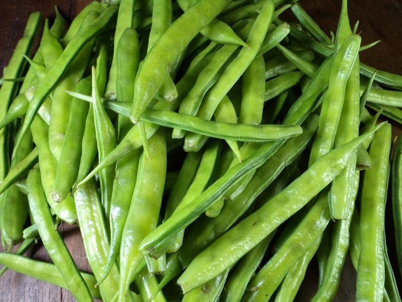 how to keep beans fresh