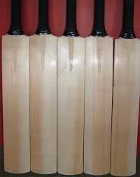 Kashmir Willow Cricket Bat
