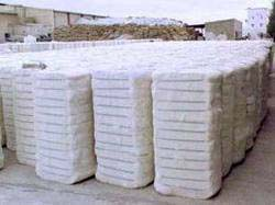 Organic Lint Cotton