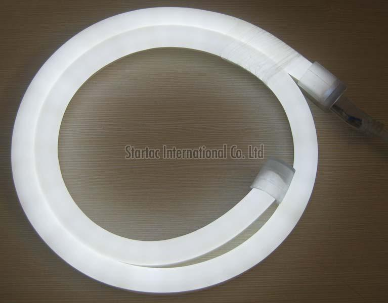 LED Neon Light (CT-NHDG-004)
