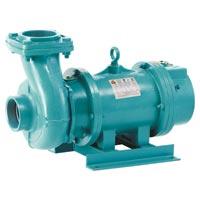 Duke Regal Open Well Submersible Pump