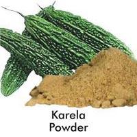 Organic Karela Powder