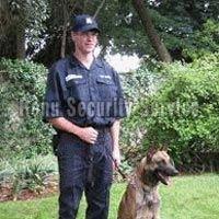 Dog Squad Services