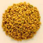 Fenugreek Seeds Traders