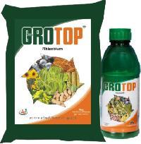 Grotop Rhizobium
