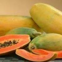 Carica Papaya Extract