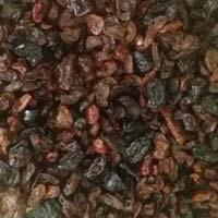 Bird Feed Raisins