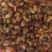 Malayar AA (Zing) Raisins
