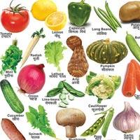 22x28 Vegetable Charts