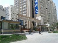 GRC Jali 11
