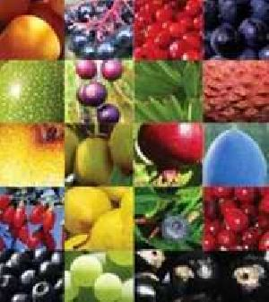 Food Phytochemical
