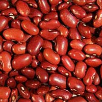 Red Speckled Kidney Beans