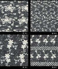 Schiffli Embroidered Fabric 04