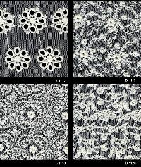 Schiffli Embroidered Fabric 05
