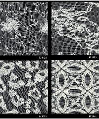 Schiffli Embroidered Fabric 06