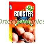 Booster Potato