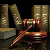 Company Law Consultant 02