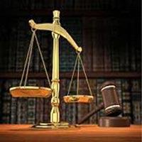 Company Law Consultant