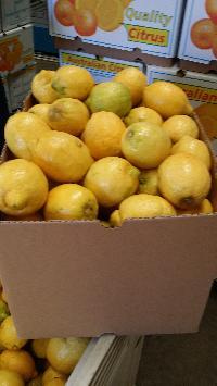 Australia Lemon
