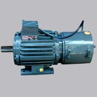 Crane Duty Motor