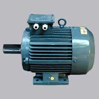 Two Speed Motor