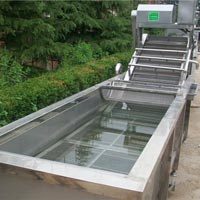 Fruit & Vegetable Cleaning Machine 04