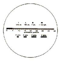 Printer Point Type (RTBP0091)