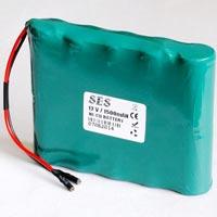 Nickel Cadmium Battery (DF001)