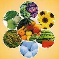 Organic Crop Protectant