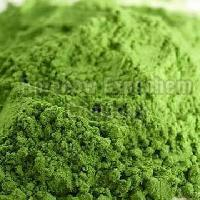 Alfalfa Leaves Powder