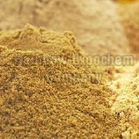 Fenugreek Extract Powder