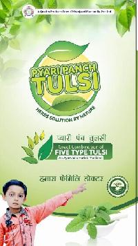 Pyari Panch Tulsi