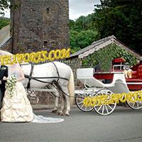 Indian Wedding White Victoria Carriage