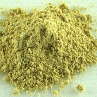 Dehydrated Fenugreek Powder