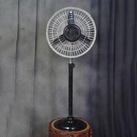 Chetak Pedestal Fans