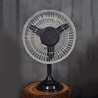 Cinni Pedestal Fan