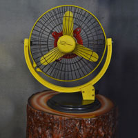 Stormy Pedestal Fan
