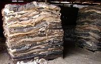 Dried Unsalted Donkey Hides