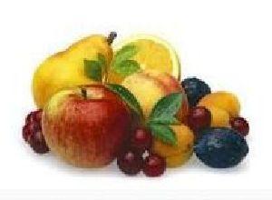 Organic Food Product 04