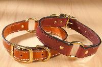 Dog Collar 02