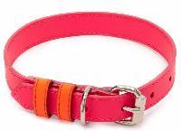 Dog Collar 06