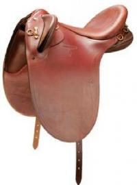 Horse English Saddle 03