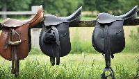 Horse English Saddle 07