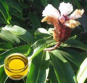 Ginger Lily Oil