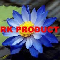Fresh Blue Lotus Flowers