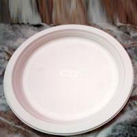 Biodegradable Paper Plates  01