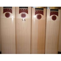 Cricket Bat 05